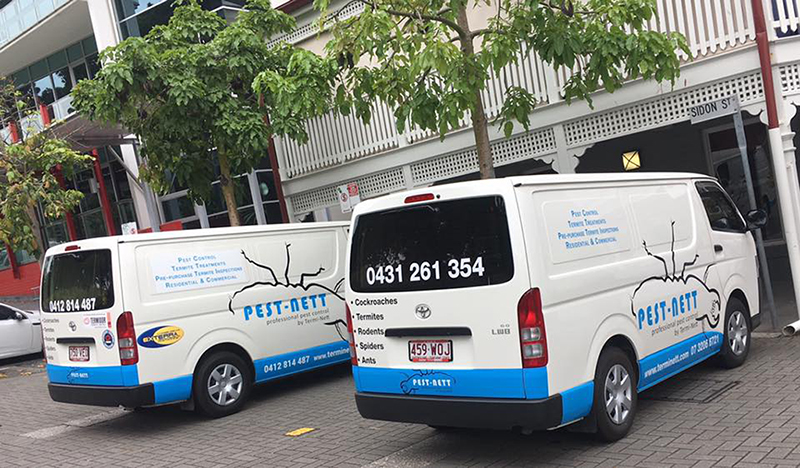 greater brisbane pest control pest nett