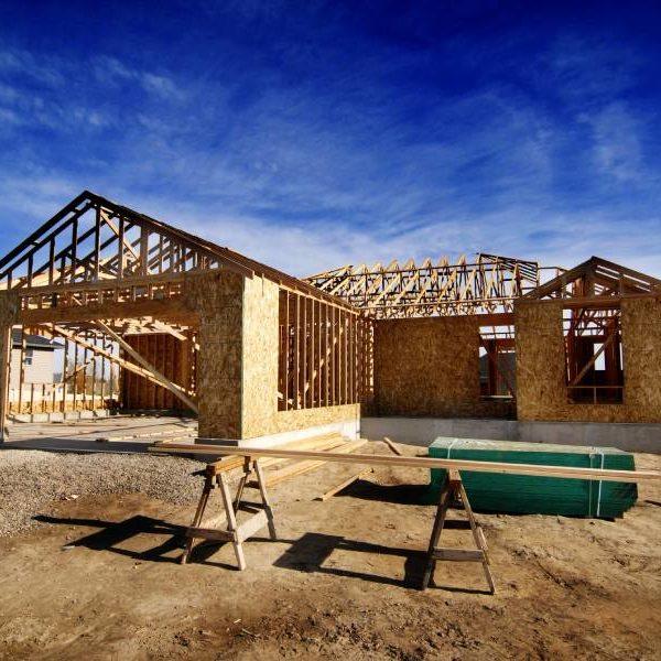 homebuilder pest control brisbane