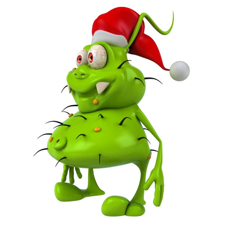 Christmas Pest Control Brisbane